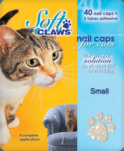 small-cat