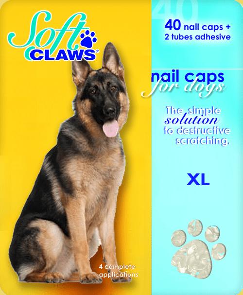 xl-dog