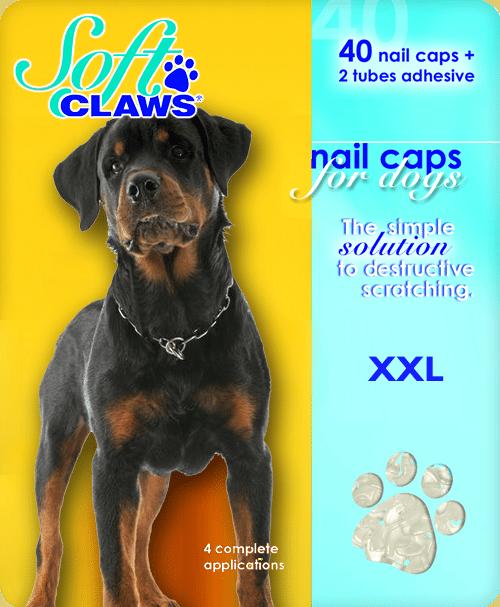 xxl-dog